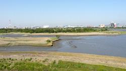 湿地巡り:行徳鳥獣保護区(千葉...