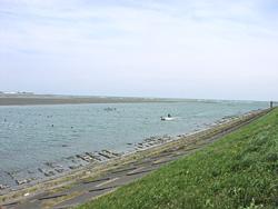 吉野川河口1