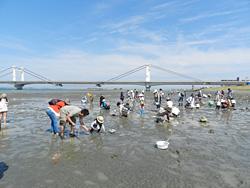 吉野川河口2