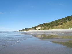 干潮時に現れる砂浜干潟(表浜海岸)