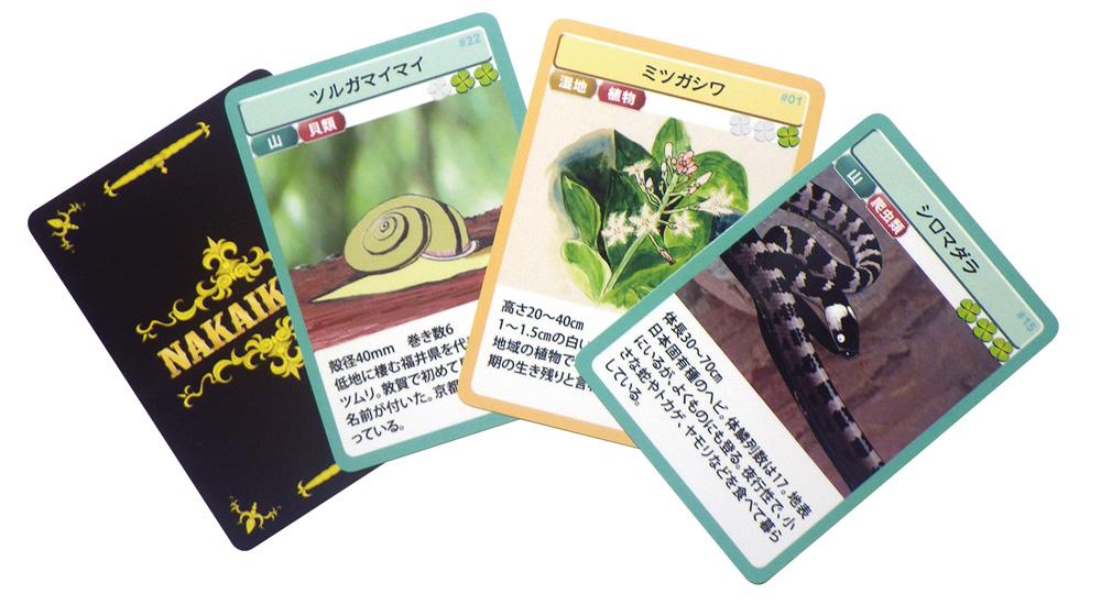 全部で42種類ある中池見生き物カード