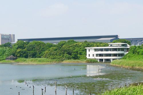 干潟を見渡せるネイチャーセンター