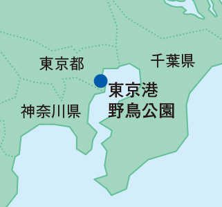 東京港野鳥公園地図