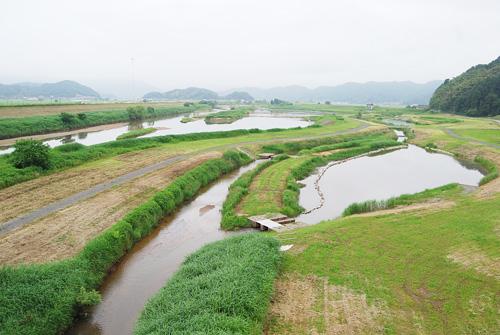 拡張エリアの中核・加陽湿地と出石川