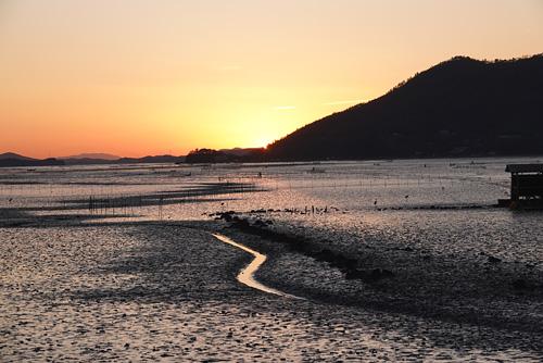 順天湾の夕暮れの光景