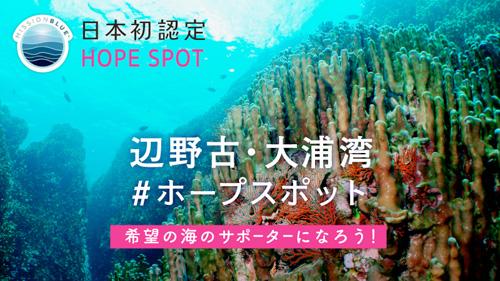 辺野古・大浦湾  ホープスポット署名サイト
