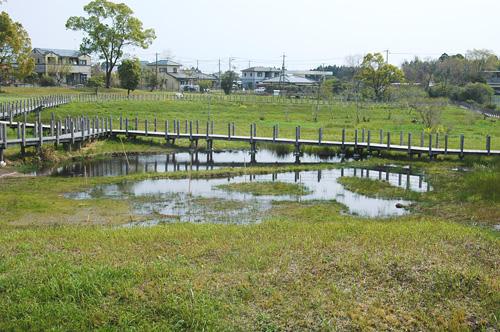 川南湿原の風景